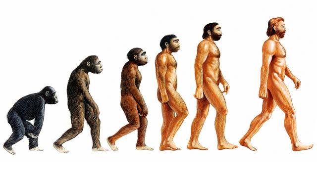 evolution-in-motion